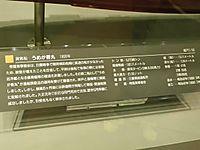 20110821_019