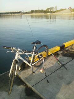 今年初釣行@仙台港